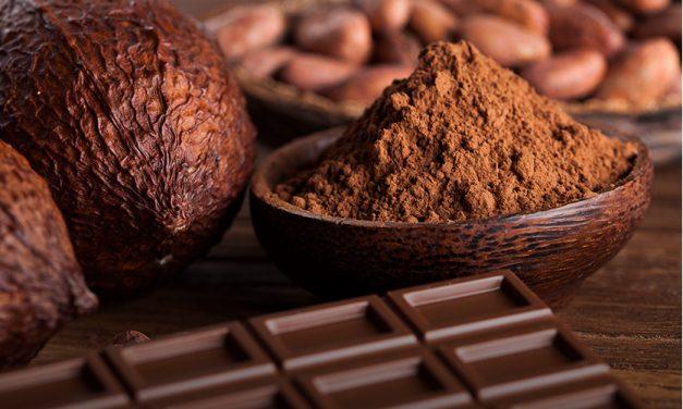 Chocolat détox : 8 bonnes raisons de craquer !
